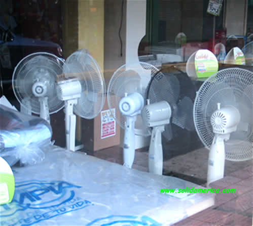 fans - Abanicos