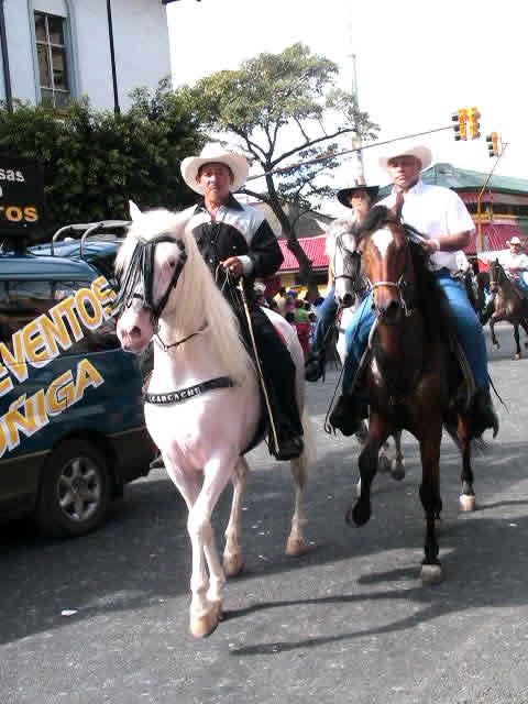 the cawboy