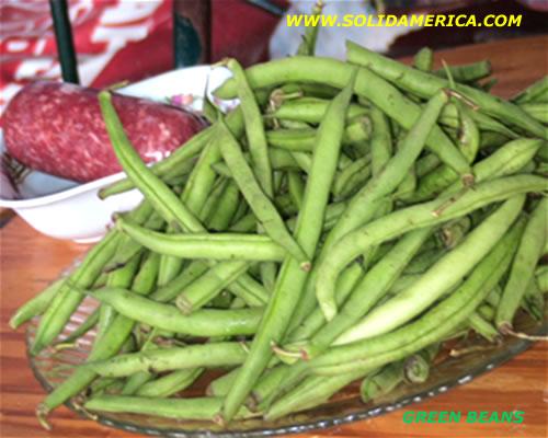 green beans seeds