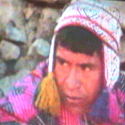 people aborigans Incas