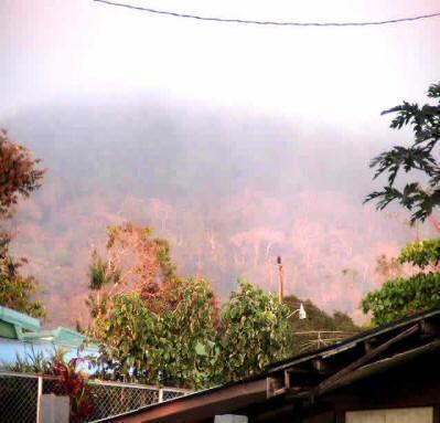 miramar orange views