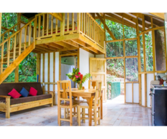 Real Estate Home Land Tree House Property For Sale In Costa Rica