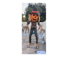 Halloween Scary Pumpkins Skeletons Pumpkin Witch