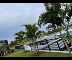 Palms Garden & Outdoor Landscaping Material