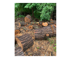 Free Fire Wood To Give Away