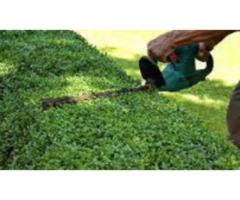 Home Services Repairing And Yard Work