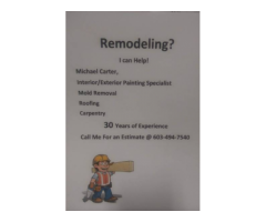Specialist Painting Sheetrock Mold Removal Service